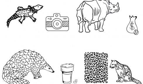 How to spot illegal wildlife trade on social media