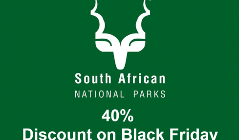 40% Discount on Black Friday