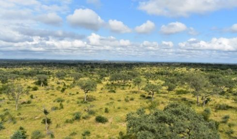 Crucial Milestone for Ecosystems Research in South Africa