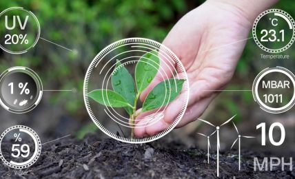 Request for proposals for digital technology solutions for small-scale farm producers announced
