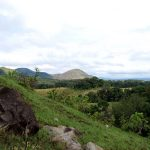 Gabon receives millions to grow its green economy