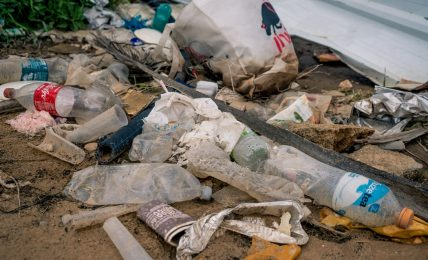 DRAM recycling the way towards greener living