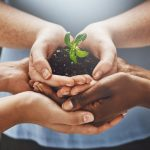 driving the future towards a greener earth