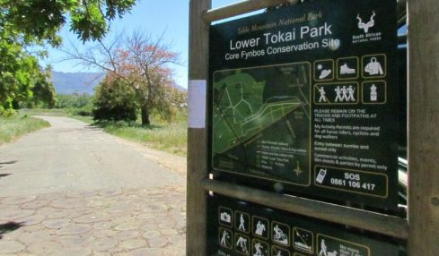 Momentum builds up well for SANparks Tokai Cecilia management framework review process