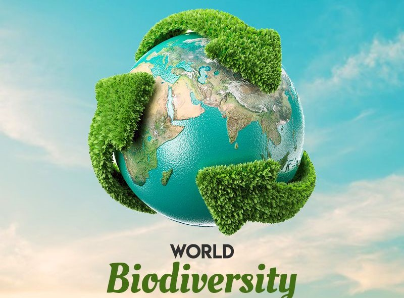 SA's Wildlife Economy Programme receives boost on International Day for Biological Diversity