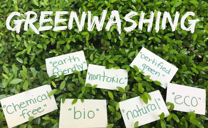 "Deutsche Bank accused of ""green washing"" in Cameroon"