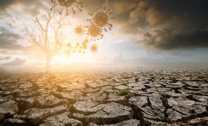 COVID pandemic's effects on climate change programmes in Africa