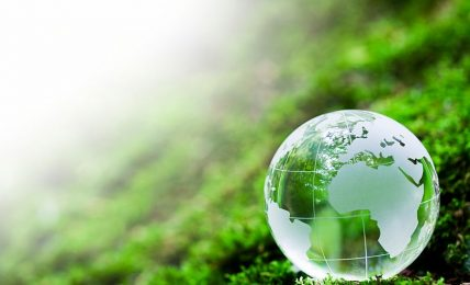 Greening Africa becomes paramount for survival