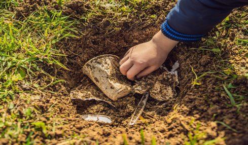 CSIR developed a cutting-edge green tech to address single-use plastic