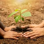 Sustainability driven by innovation